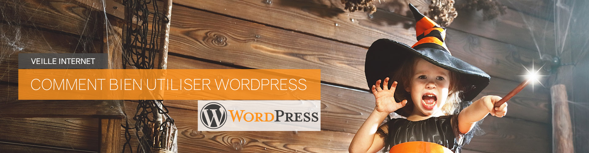 ban-veille-wordpress